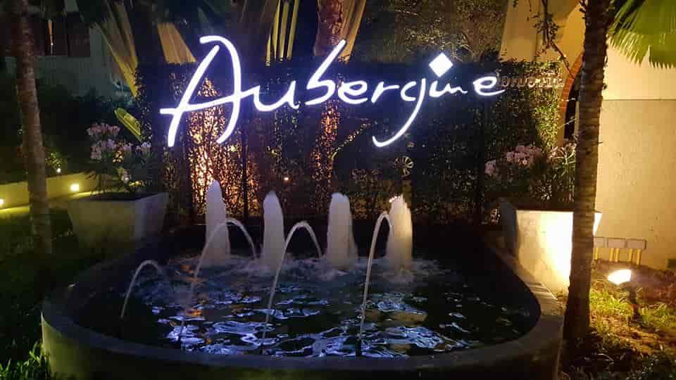 Aubergine 01