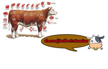 เนื้อวัวดีอยู่ที่อะไร