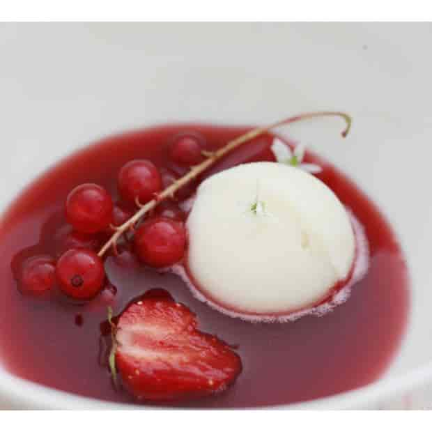 Berry Consomme